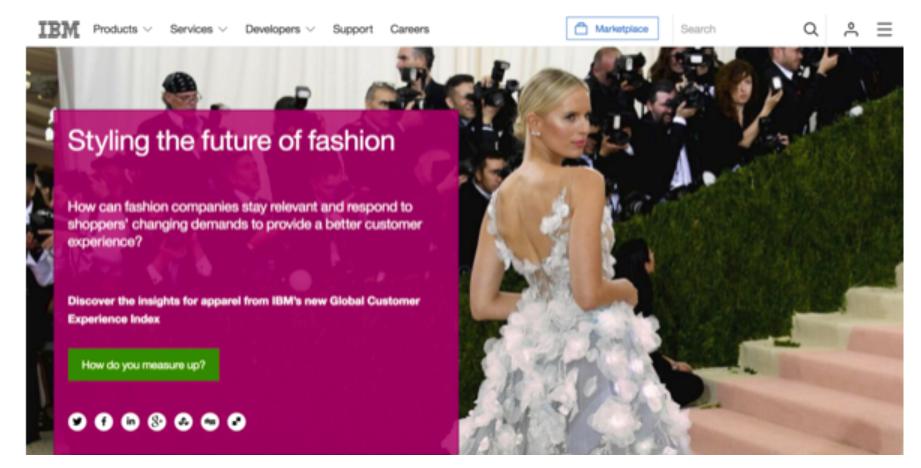 IBM Fashion
