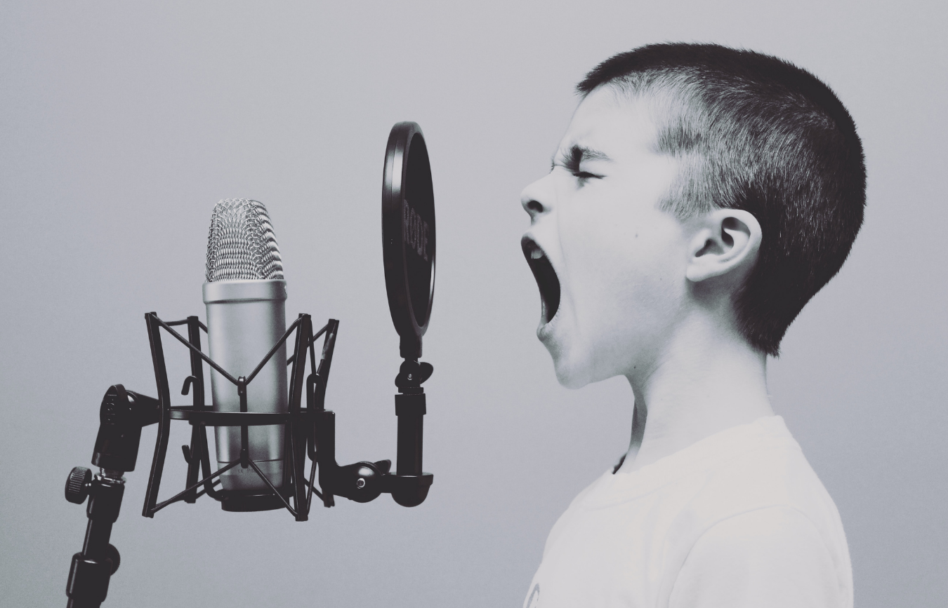 Establishing Your Brand Voice in B2B Marketing